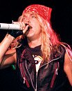 bret michaels and ambre lake